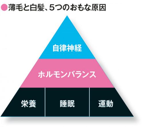 myage_010_079イラスト(三角)