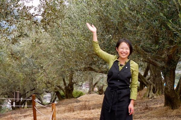 小豆島・オリーブの楽園①世界でも認められた、小豆島産オリーブオイルの魅力