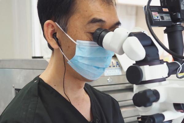 最新の歯科ケアは北欧に注目!①治療
