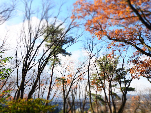 吉田_冬の京都1_11