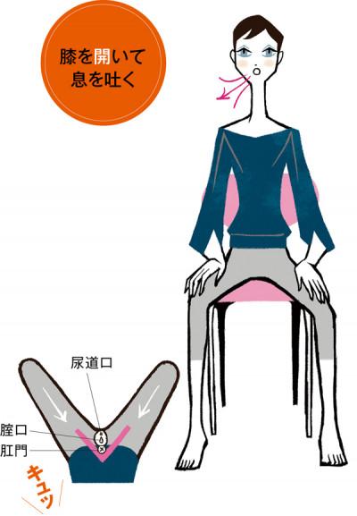 椅子に座って両膝を肩幅よりやや広く開き、背筋を伸ばして息を吐きましょう。膝を開いた状態で骨盤底筋にキュッと力を入れると、肛門のあたりが締まるのが実感できます。両足を開脚すると、よい姿勢を保ちやすく、骨盤底筋とともに腸腰筋や腹横筋、横隔膜など、インナーユニットと呼ばれる筋肉群が呼吸に合わせて動くのもわかります。1セット5回行って