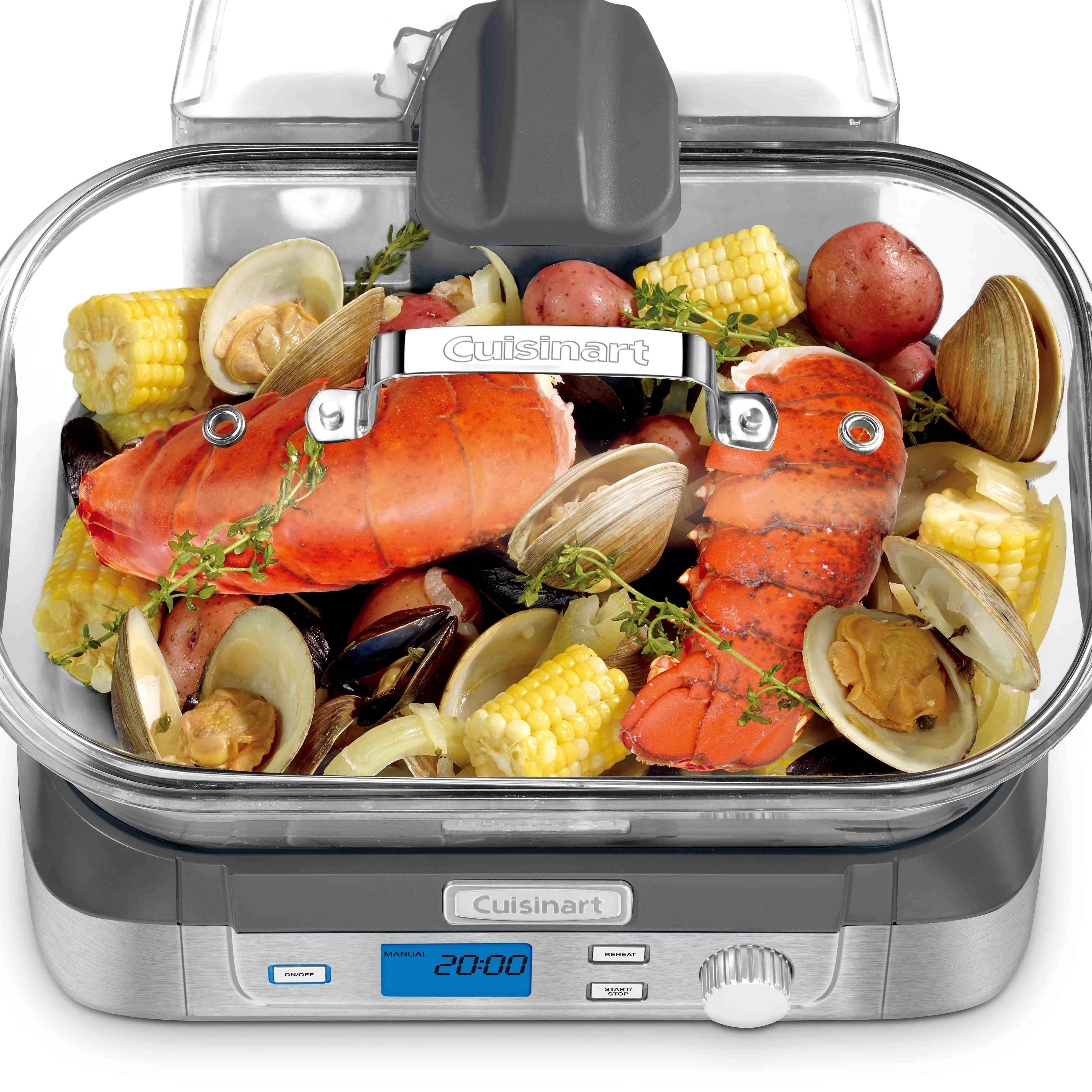 stm1000J_above_lobster_mlf_t