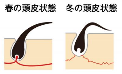 気温が上昇する春は血流もアップするので、頭皮ケアの始め時。ただUVには要注意