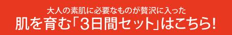 お試し3 文字ハ-ナー PC(454×50)