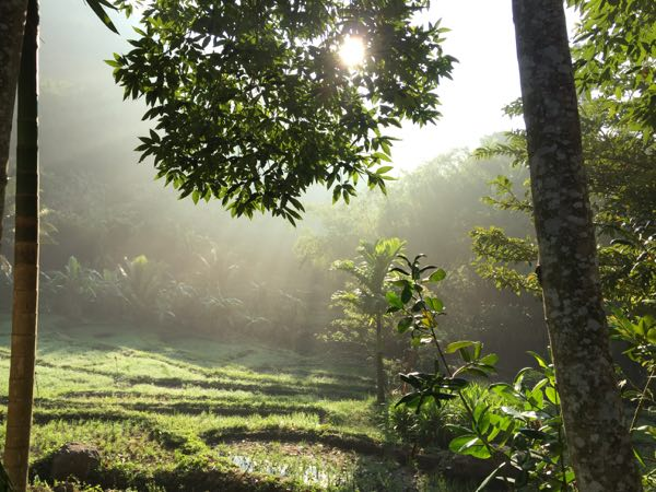srilanka ayupiyasa