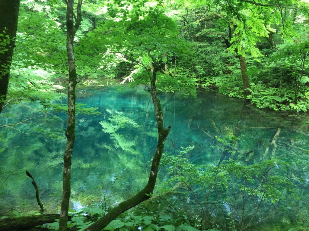 横森さん 湖 58720371