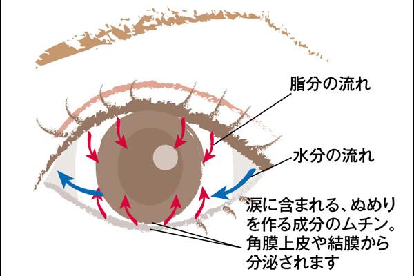 40、50代が知っておくべき「目の病気」③【ドライアイ】