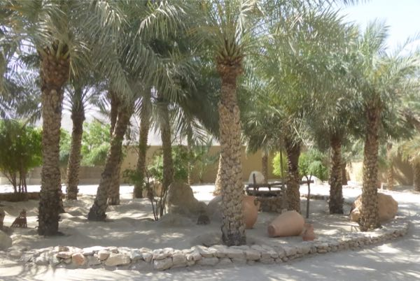 5oman zighy oasis