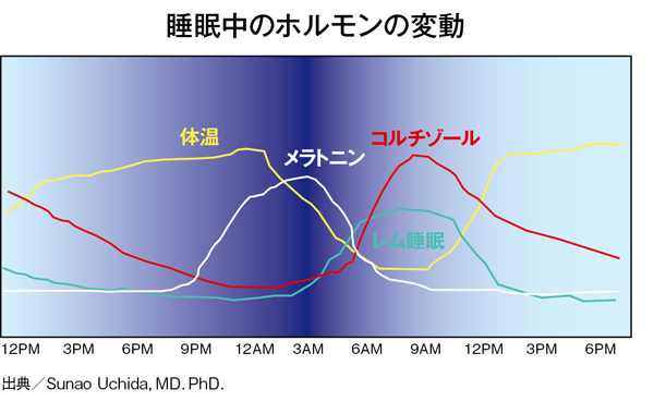 更年期世代の睡眠 睡眠中のホルモン