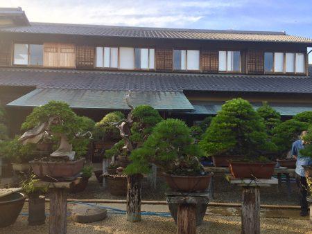 朝倉さん 日本家屋