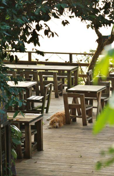 東山珈琲 カフェ