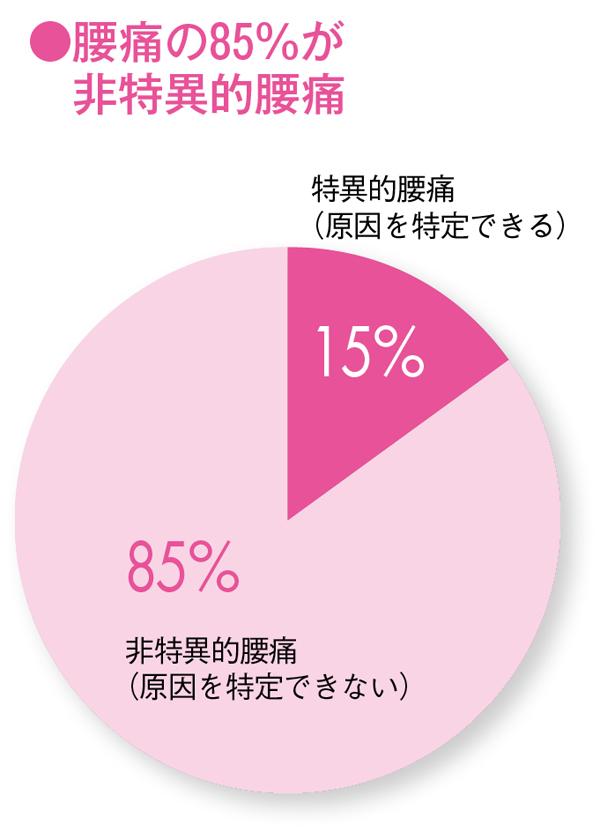 ねたままストレッチ 円グラフ