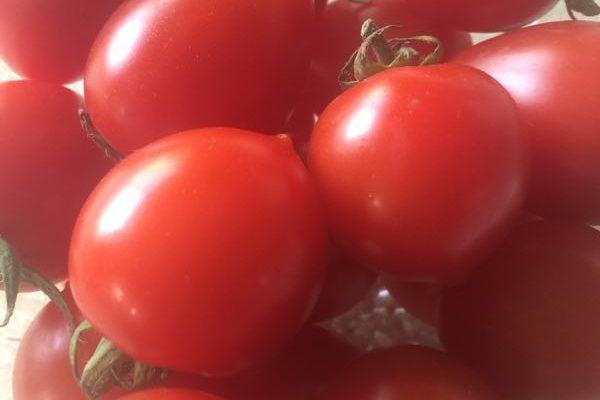 栄養価の高いミニトマトたっぷり! パワーサラダ
