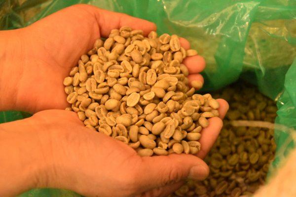 スペシャリティコーヒーを千葉・東金の「自家焙煎珈琲 DECO」で学びます!