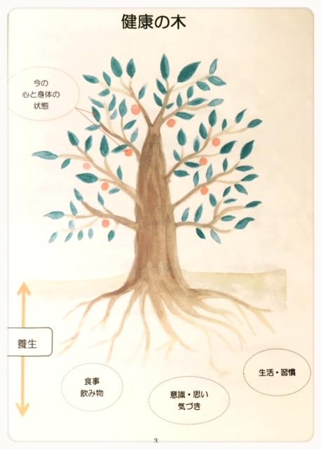 樫出さん 木イラスト