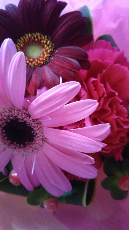 樫出さん 花