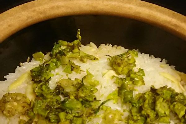 以前からうわさを聞いていた新潟の割烹渡辺、料理のレベルに感動!