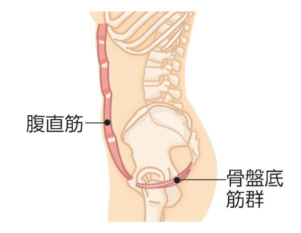 筋肉貯金 下腹部1