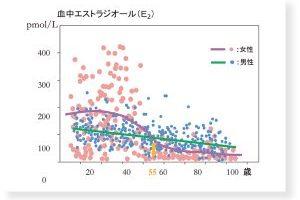 乾燥老化④婦人科医対馬ルリ子先生に聞きました:女性ホルモンが関係するの?