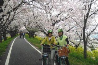【埼玉県上尾市】レンタル電動アシスト自転車で「荒川のお花見ツアー」