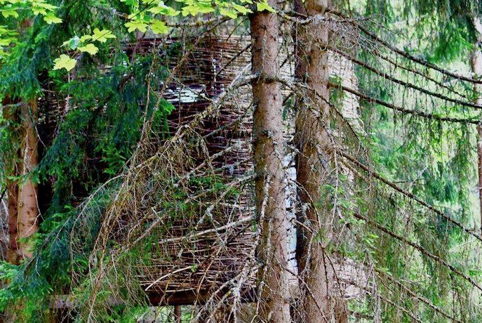 エタップ・デュ・ツール直前合宿は、アルプスに抱かれたツリーハウスで