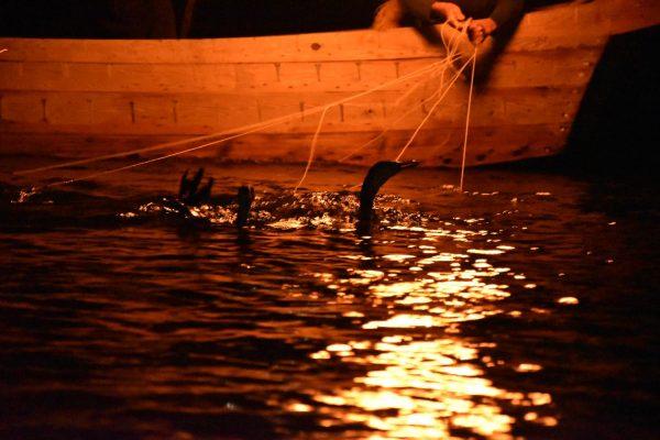 川を挟んで江戸時代と令和。長良川で伝統文化を満喫!