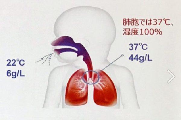 実は「鼻呼吸」こそインフルエンザ予防のカギだった⁈