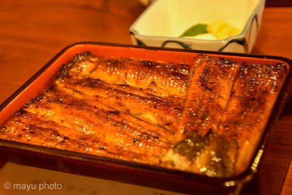 鰻ハンターは今日も行く。三島の老舗、桜家さんへ