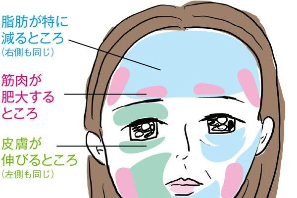 加齢で大顔化、四角顔化するのはなぜ?