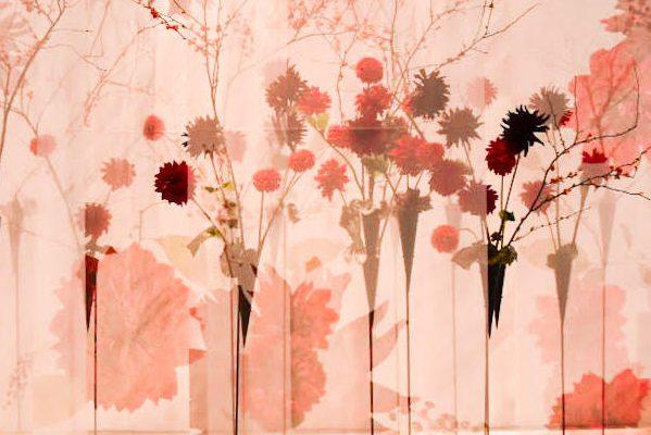 世界でも活躍しているフラワーアーティスト川崎景太さんの作品が素敵すぎる。