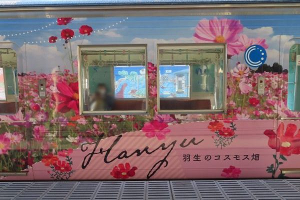 のんびり大人女子旅に。秩父鉄道フルラッピング列車「彩色兼備」