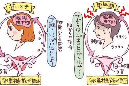 閉経の時期を予測できる?/対馬ルリ子先生が回答・「閉経」のギモン(後編)
