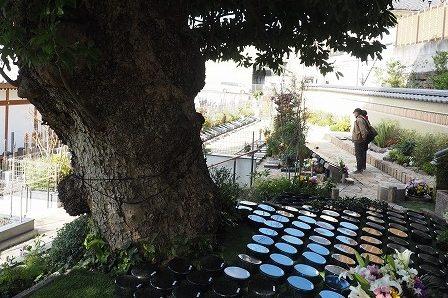 樹木葬のお墓ってどんなもの? /その2:見学に行ってみました