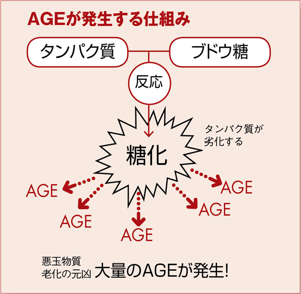 抗糖化 AGE図