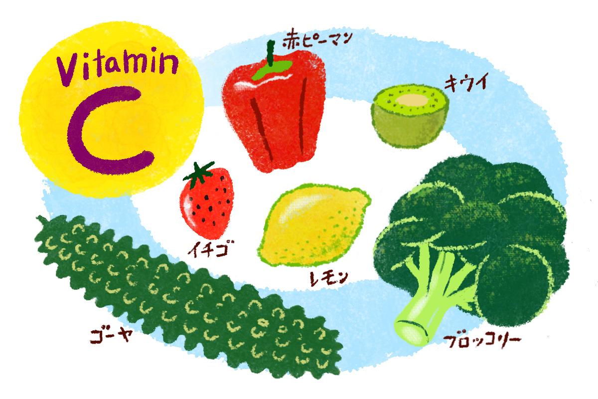 「ビタミンC」のウイルス予防効果に注目!!/免疫力を高める栄養素①