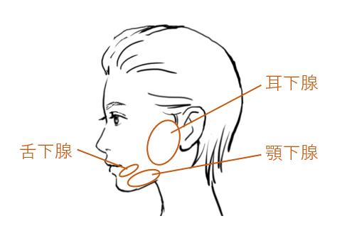 マスクの中で感じる自分の口臭。それ、ひょっとしたら感染症リスクを高めているかも