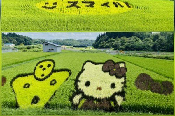 田んぼアートを見に秋田内陸縦貫鉄道で小旅行。超ソーシャルディスタンスでした!