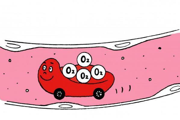 呼吸のしすぎで細胞が酸欠!?/Dr.根来の体内向上プロジェクト