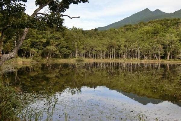 北海道ならではの風景お届けします。知床世界自然遺産の知床国立公園へ