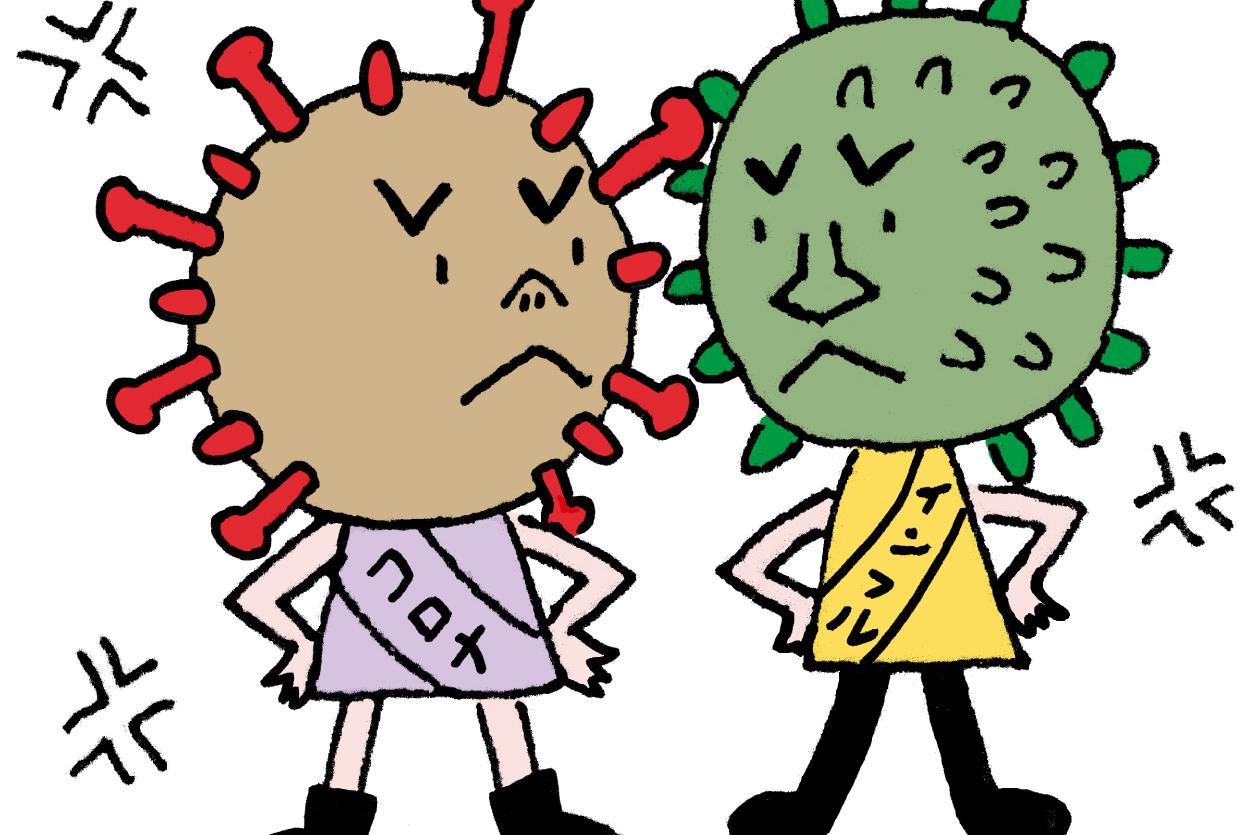 インフルエンザと新型コロナ、同時にかかったらどうしよう…/根来教授の特別講座⑥