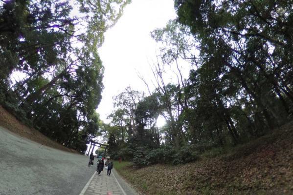 時期をずらした初詣。360度カメラで明治神宮をお楽しみください
