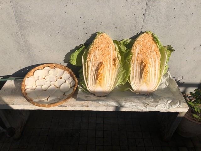 白菜と干し大根