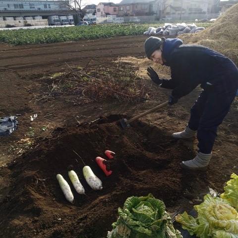 畑での加藤紀子さん