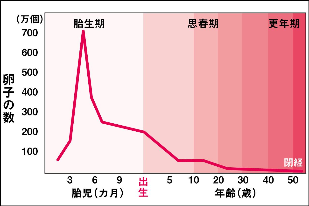 卵巣年齢からも予想できる閉経の時期のグラフ