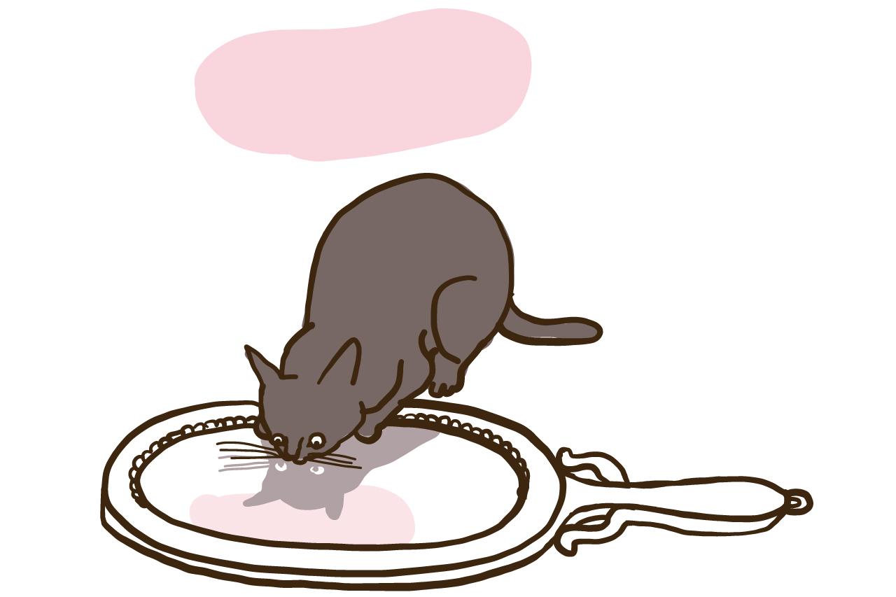鏡を覗き込む猫のイラスト