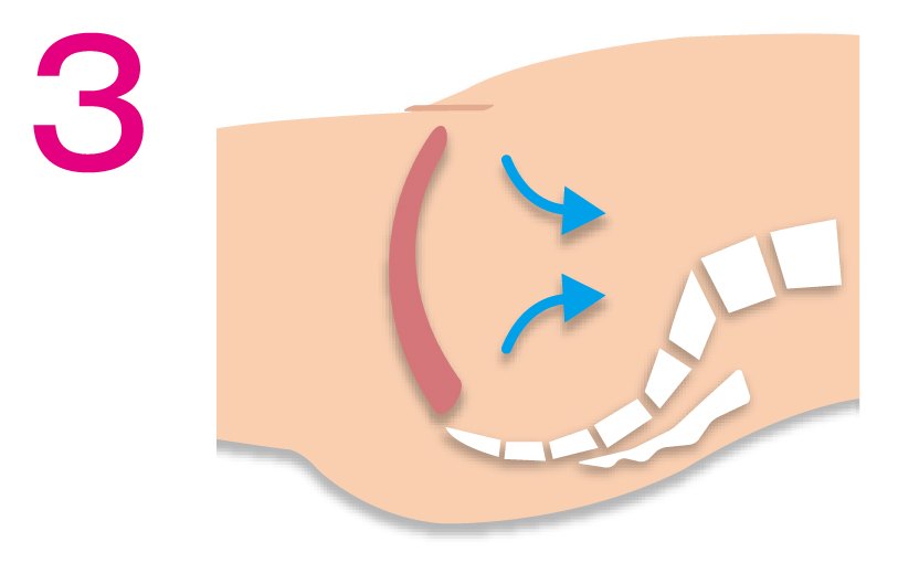 尿道・腟・肛門の全体を引き上げて。これが基本になります