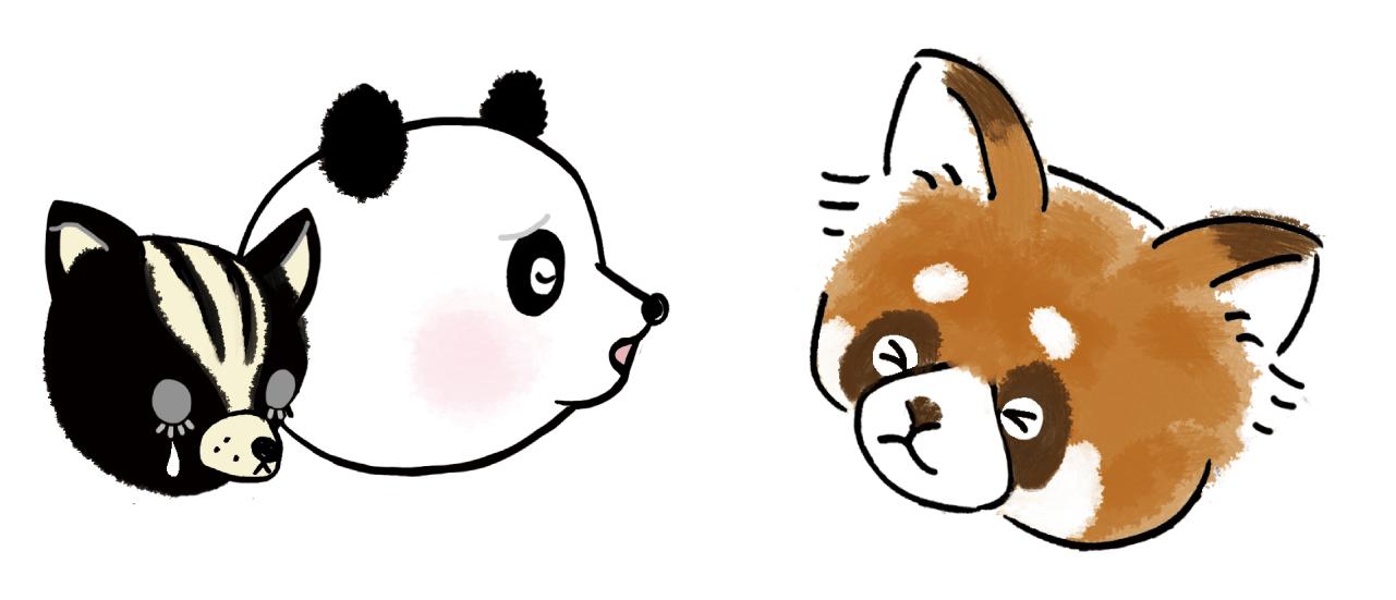 スカンクとパンダとアライグマのイラスト