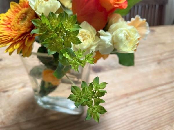 ブプレリウム入りの花束