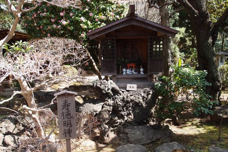 川越のお屋敷「丹徳庭園」で過ごす 、優雅なひととき