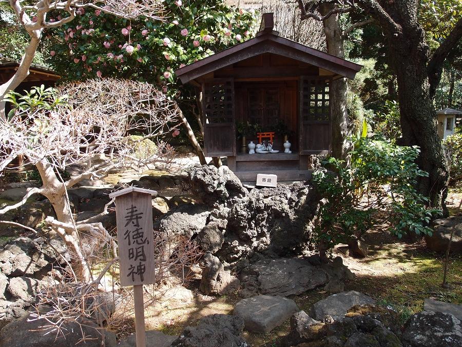 吉田おでかけ 川越「丹徳庭園」お庭寿徳明神お稲荷さんP3183520